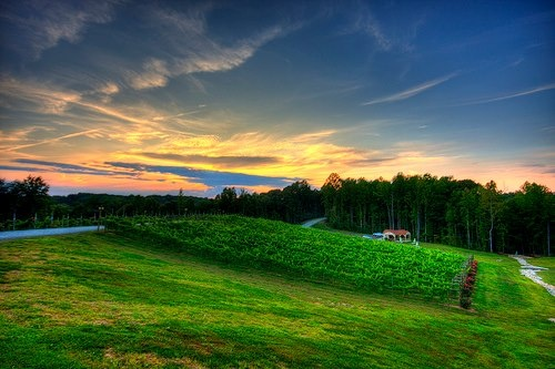 Sunset Potomac Point Winery