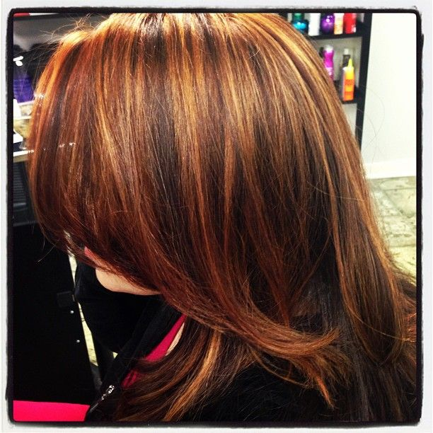 Pin Caramel Brown Hair Color With Highlights Pinterest Womentrending ...