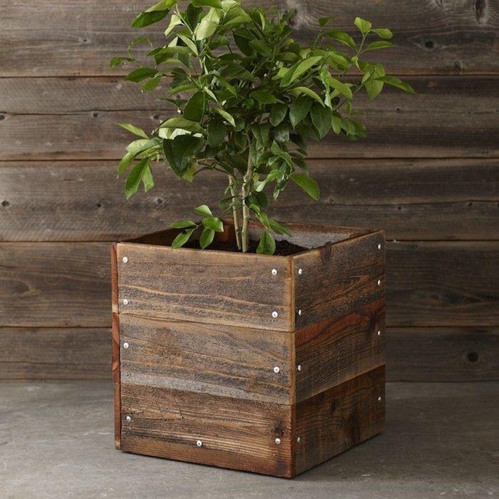 Top Square Wood Planter Boxes 700 x 700 · 84 kB · jpeg