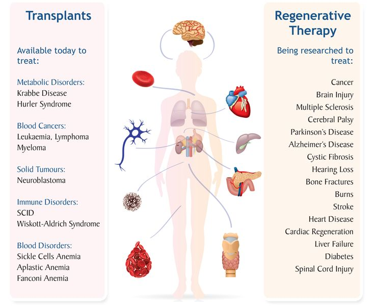 an analysis of the value of stem cells in medicine [682 pages report] check for discount on global regenerative medicine market analysis & forecast to 2021 stem cells, tissue engineering, biobanking & car-t.