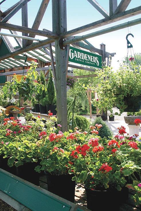 Pinterest discover and save creative ideas for Garden supply burlington vermont