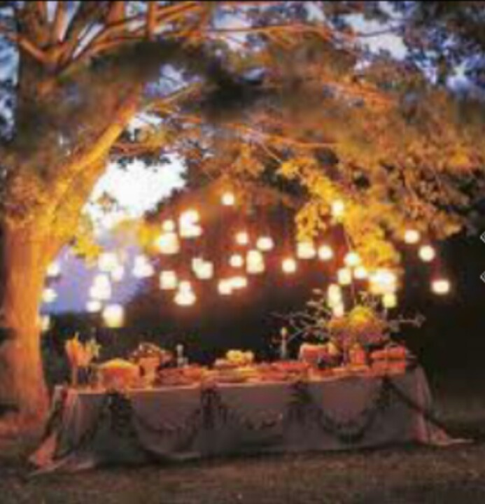 Outdoor wedding food table lighting love outdoors for Meal outdoors