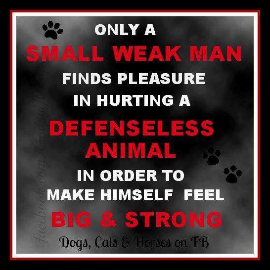 dick fox quotes