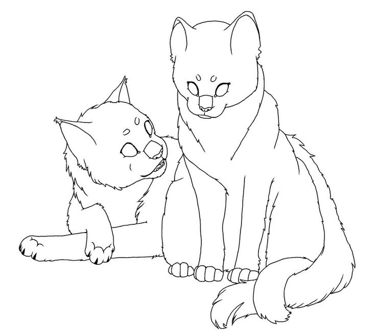 It 39 s forting to have a mate Warrior cat coloring