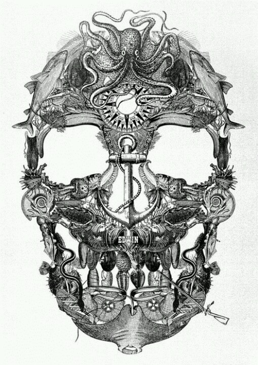 Pin By Pj Losh On Skulls Pinterest