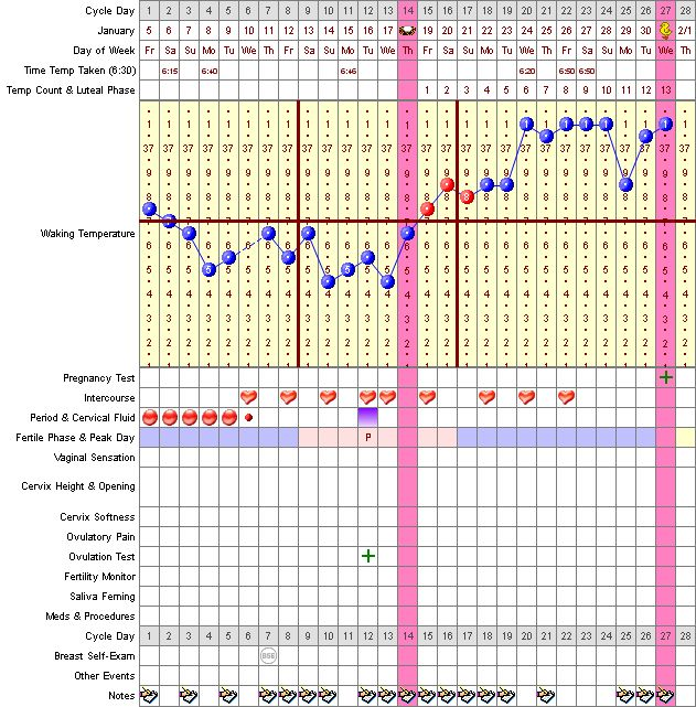 Natural family planning chart the image for Family planning com