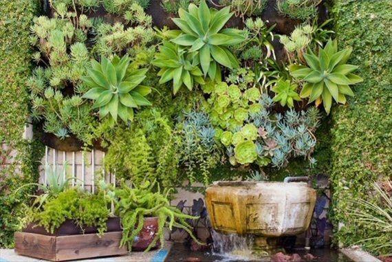 DIY Wedding Ideas - Succulent Backdrop | Cacti and Succulents | Pinte ...