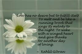 zen quote about love bing images quote a holic pinterest