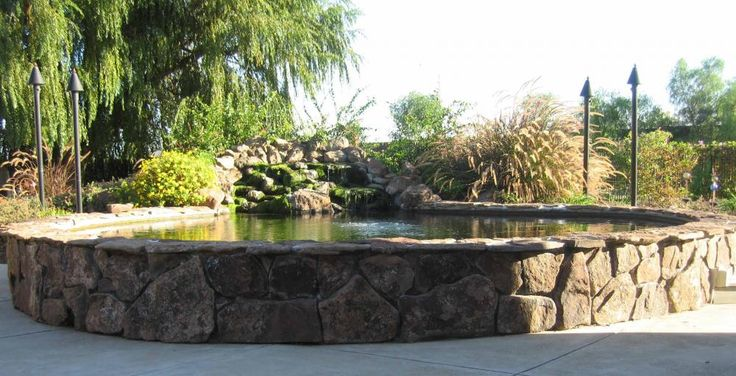 Raised Edge Pond Ideas Pond Ideas Pinterest