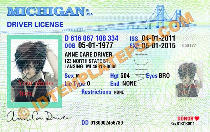 SOS Drivers License and State ID State of Michigan 6970805 ...