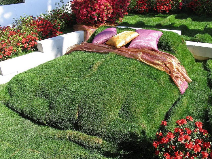 Grass bed flowers pinterest for Grass plants for flower beds