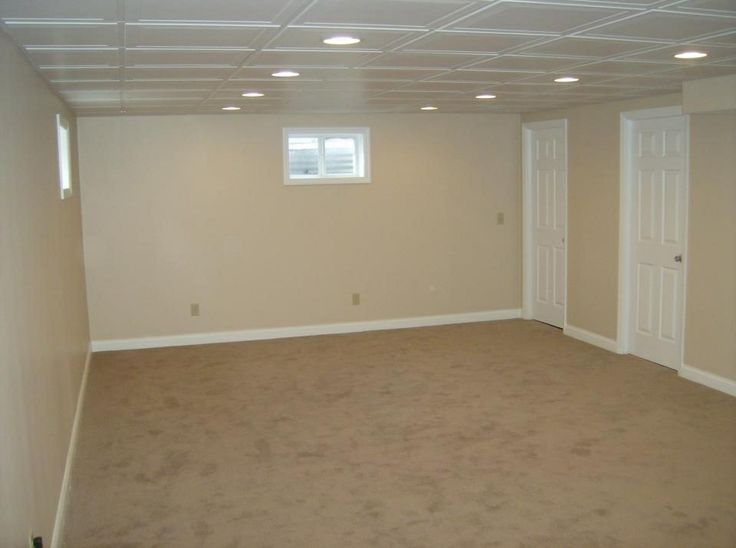 Mold Resistant Paint For Basement Walls
