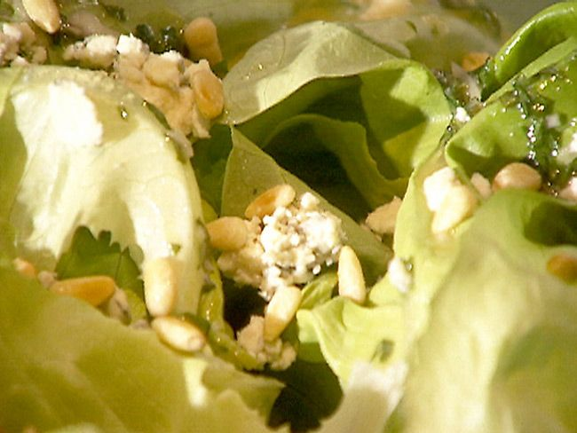 salad-bibb_lettuce