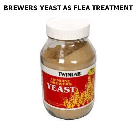 Brewers yeast for cats fleas