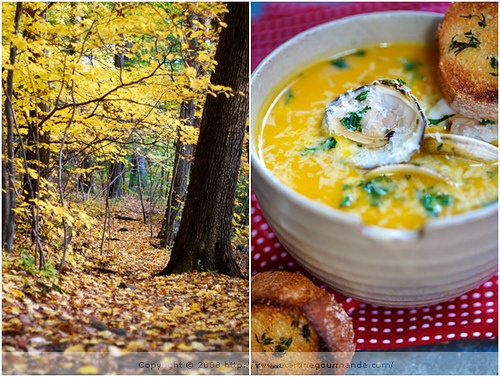 Curried Red Kuri Squash Soup | Soups | Pinterest