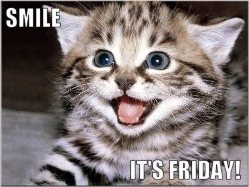 Happy Friday Happy Friday Animal