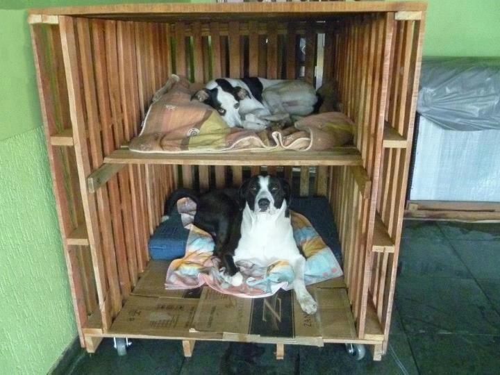 Habitaci n para perros maravillas con palets pinterest - Casas para perros con palets ...