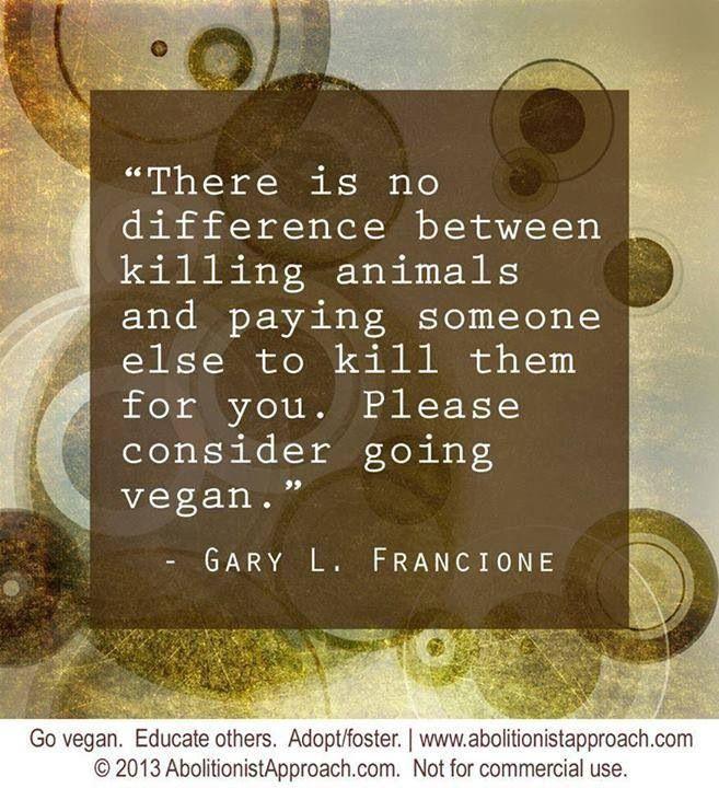 anti vegan quotes quotesgram