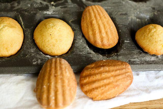 lemOn glazed madeleines by fOOdiebride, via flickr