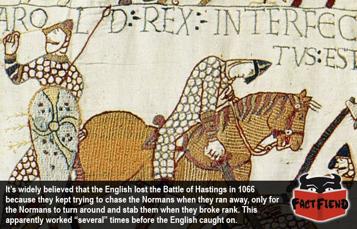 battle hastings 1066 essay Essay on why william won the battle of hastings - why william won the battle of hastings the battle of hastings in 1066 saw harold the king of england defeated by william, duke of normandy.
