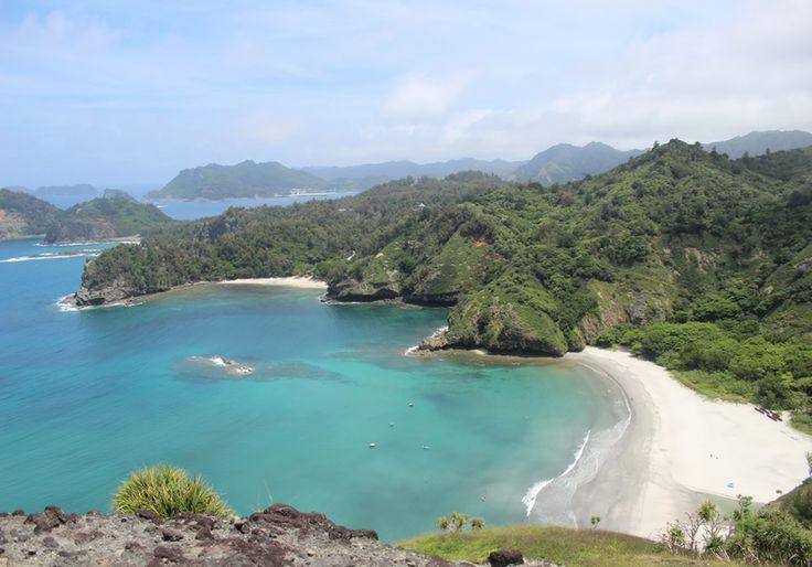 小笠原諸島の画像 p1_5