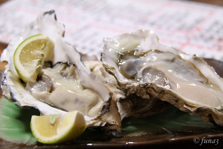 Fresh raw oysters - photo#19