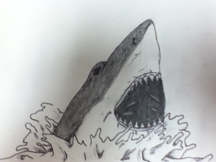 Shark Drawing In Pencil Easy | www.imgkid.com - The Image ...