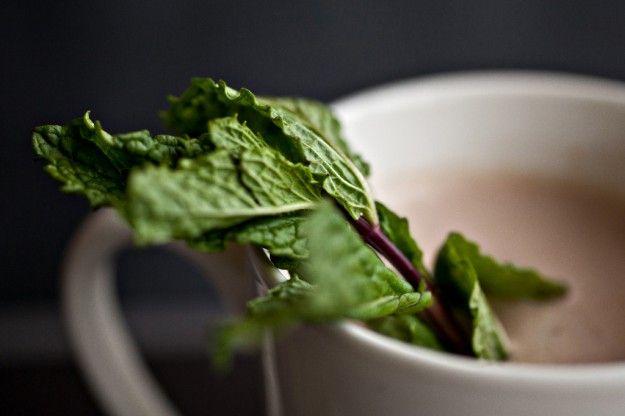 fresh mint hot chocolate   S U G A R C R A V I N G   Pinterest