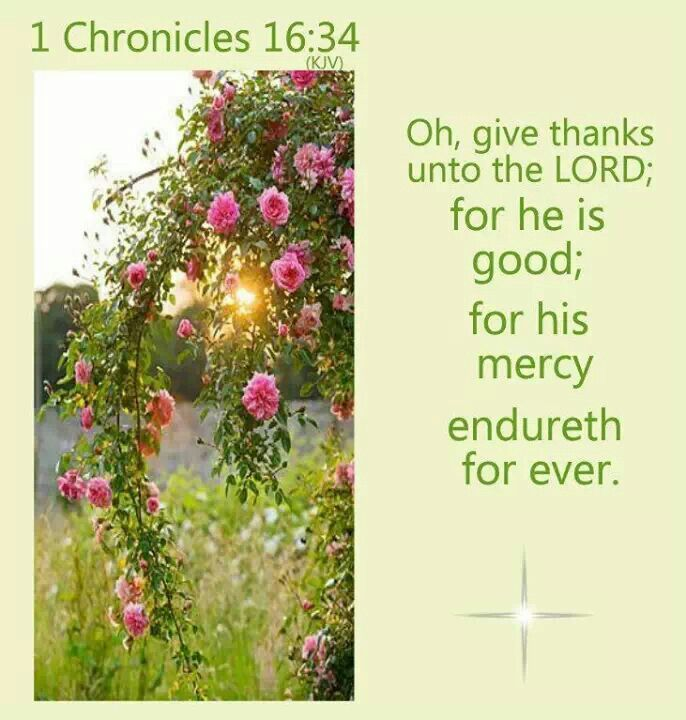 1 Chronicles 1634