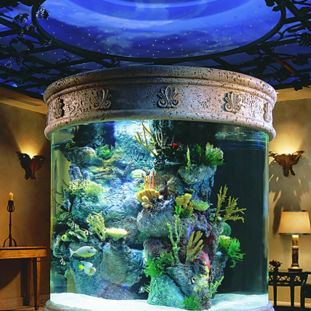 Home With An Indoor Aquarium Amazing Rooms Pinterest