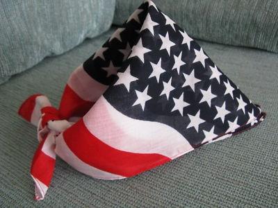 american flag wrap