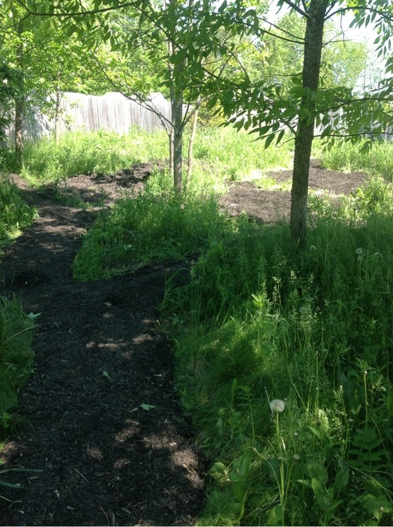 Backyard Nature Preserve : Building a nature trail and wildlife preserve garden http