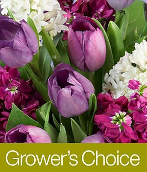 proflowers growers choice reviews