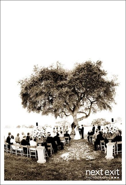 By a tree. wedding location ideas. I WANT to find a beautiful simple location! Why can't I find a place, like this? This is all I want!!!