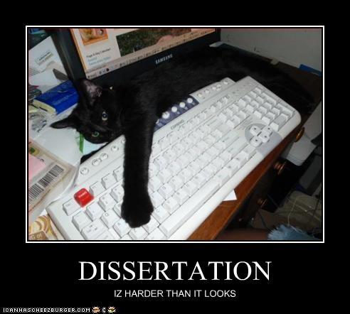 Phd writing service jokes