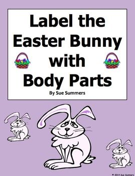 Easter Bunny Body Parts Worksheet - Label 11 Body Parts in English by ...