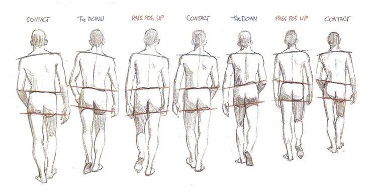 animate-nadine: Walk cycle from the back view ✤ || CHARACTER DESIGN REFERENCES | キャラクターデザイン • Find more at https://www.facebook.com/CharacterDesignReferences if you're looking for: #lineart #art #character #design #illustration #expressions #best #animation #drawing #archive #library #reference #anatomy #traditional #sketch #development #artist #pose #settei #gestures #how #to #tutorial #comics #conceptart #modelsheet #cartoon || ✤