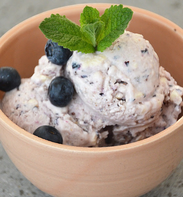 ... frozen yogurt sweet pea s kitchen blueberry frozen yogurt blueberry