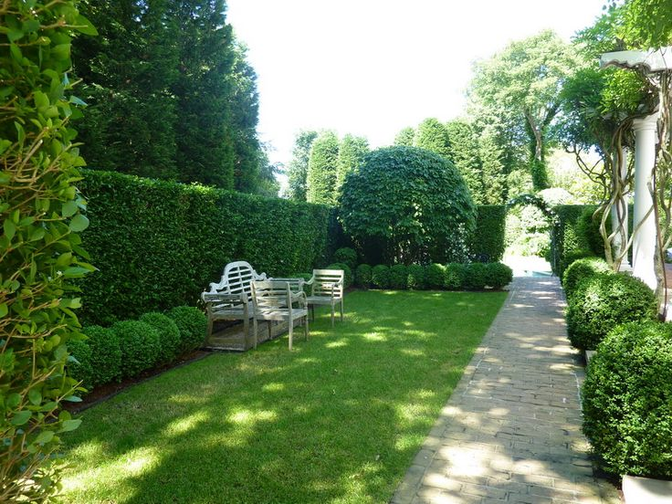 Tall Boxwood Hedge Row Landscaped Gardens Pinterest