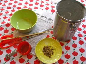 DIY seed tape   Yard + Garden   Pinterest