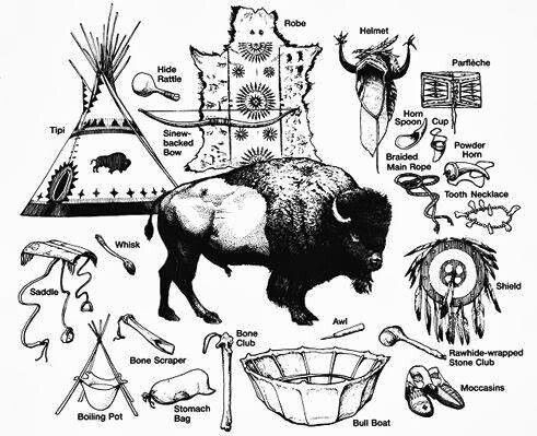 Native American Buffalo Uses