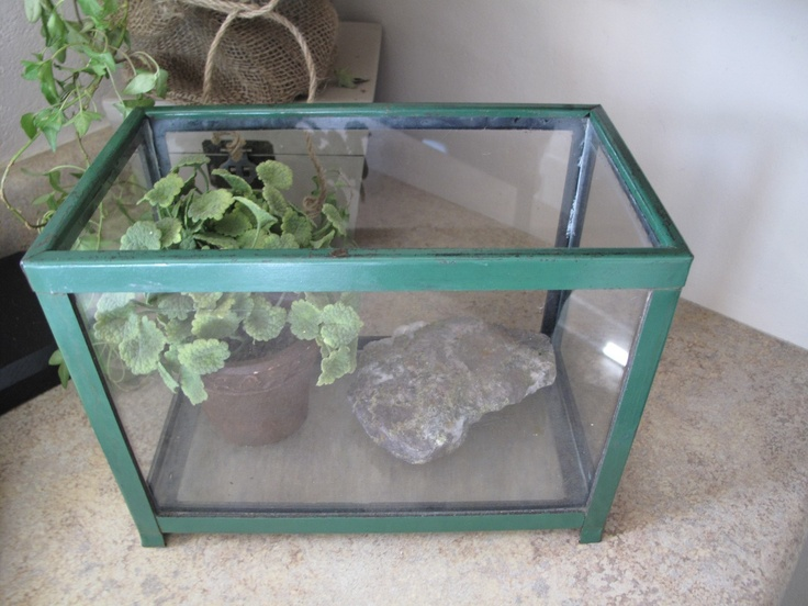 Pin by beth rickert kinsey on fish bowls stands for Metal fish tank stand