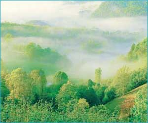alley also known as dale or vale refers to a deep depression with a chief extent in one way. A deep river valley is termed as a gorge or canyon. The base of the valley is termed as the floor of the valley and may be around 1-10 kilometers wide.