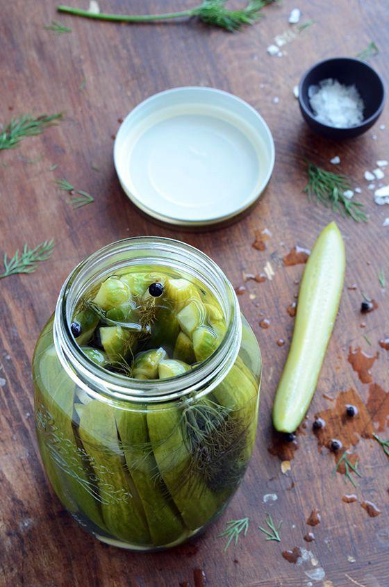 Garlic-Dill Quick (Refrigerator) Pickles {Small Batch