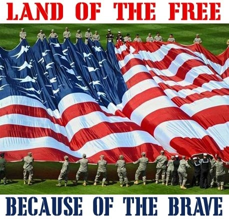 Land of the free because of the brave america i love for How to get free land in usa