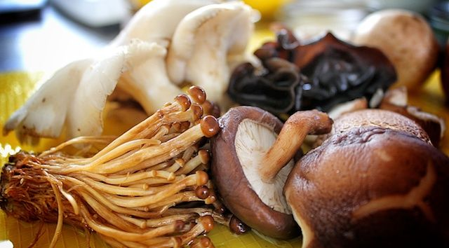 ... Cooking: How to Make Gluten Free Vegan Mushroom Gravy | Rich Roll