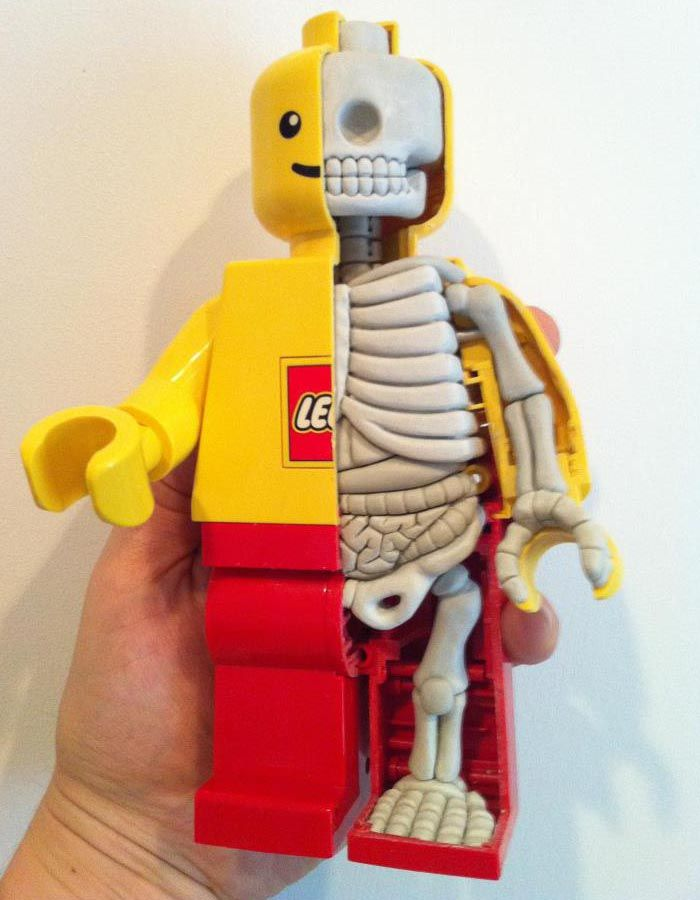 Anatomical LEGO Minifigure