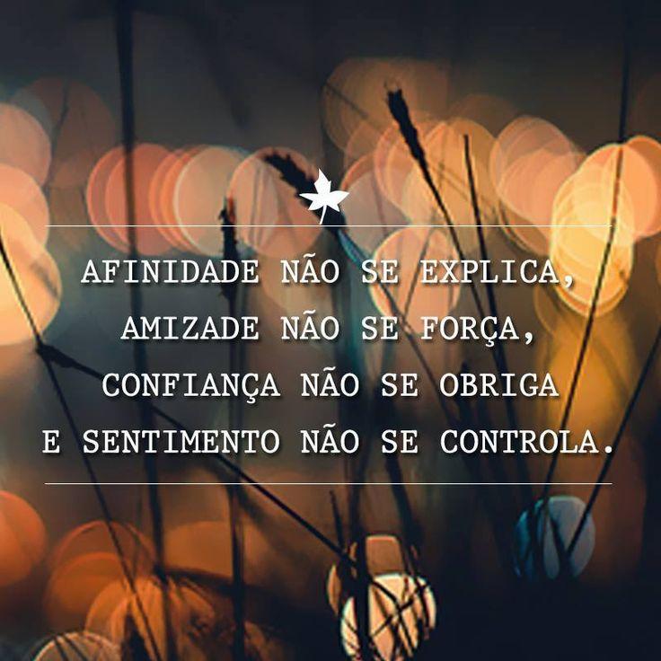 Afinidade não se explica, amizade não se força, confiança não se obriga e sentimento não se controla.