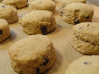 Mocha chocolate chip scones--yum! | Desserts I've Made and Want to Ma ...