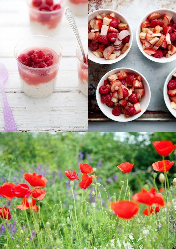 Roasted Rhubarb Sherbet with Poppy Flower Sugar